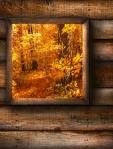 Autumn Woofs